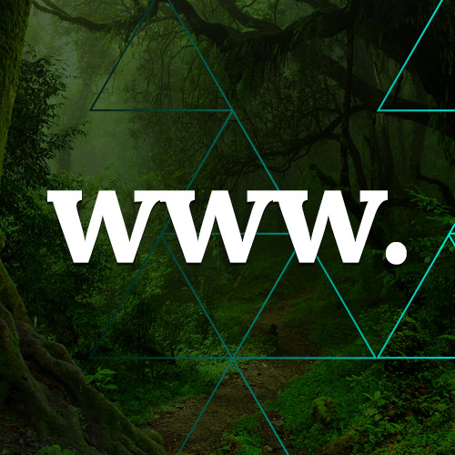 Websites can be carbon neutral. Here's how...